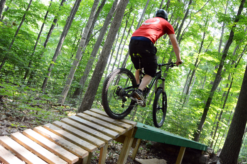 Riding features at Boyne Highlands mountain bike trails.