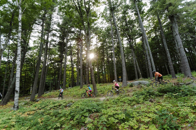 Dirt Serpent was Mount Sunapee's first DH trail, designed for beginner riders.