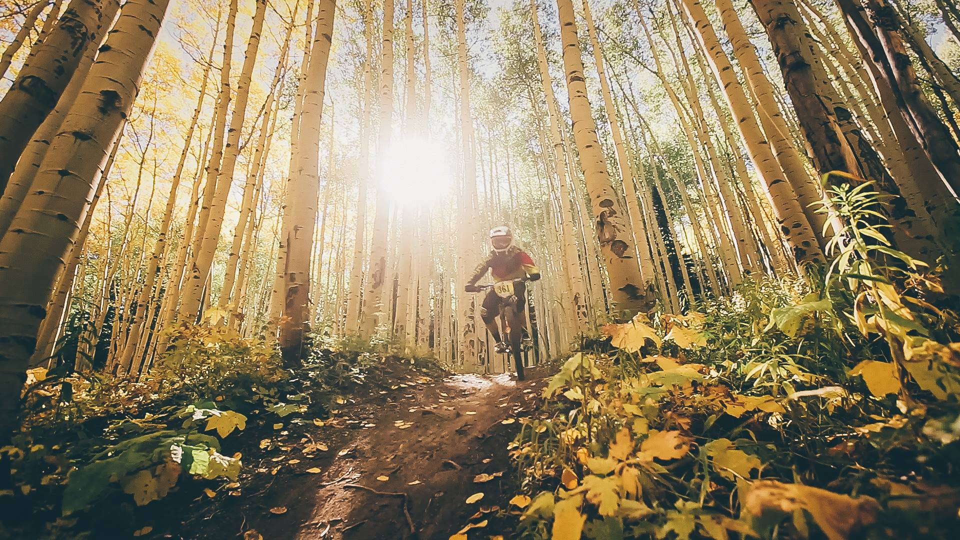 Powderhorn Bike Park in Colorado