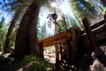 Bike Park Update for Mammoth Mountain