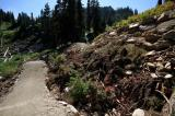 Advanced Flow Trail Opening @ Stevens Pass