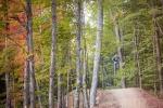 LAST CHAIR ALERT: Killington Mountain Bike Park