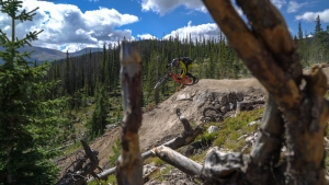 A rider sends it into 'Upper Boulevard,' Trestle's newest black trail.