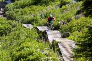 FIRST CHAIR ALERT: Stevens Pass Bike Park Opens for 2015