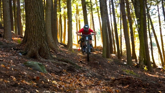 A rider chargers over a New England root carpet at Thunder Mountain Bike Park.