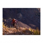Snowbird Adding Two New Mountain Bike Trails in 2014