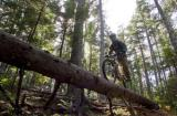 Sunday River Announces Improvements to Mountain Bike Park