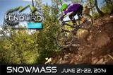2014 Big Mountain Enduro Comes to Bike Snowmass this Weekend